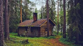 Home office cabin in the woods.